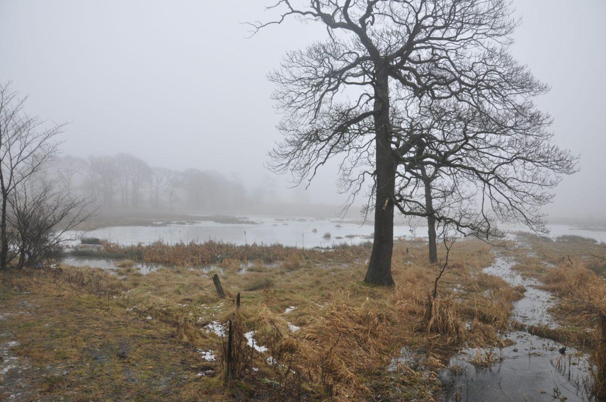Seven Lochs Wetland Park